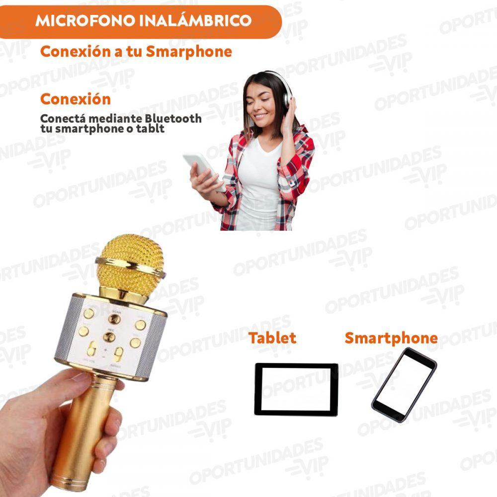 Plantilla Microfono Caracteristicas