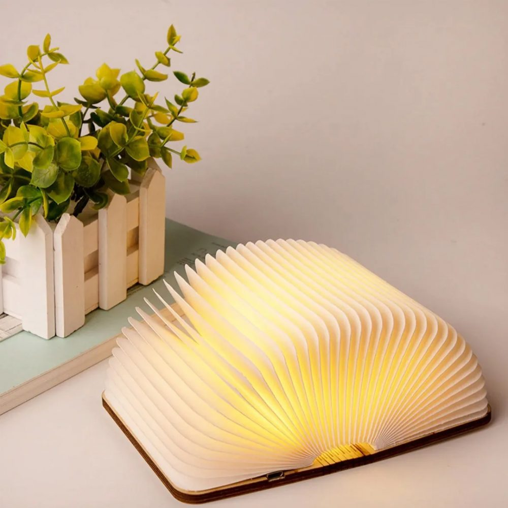 libro lampara 5