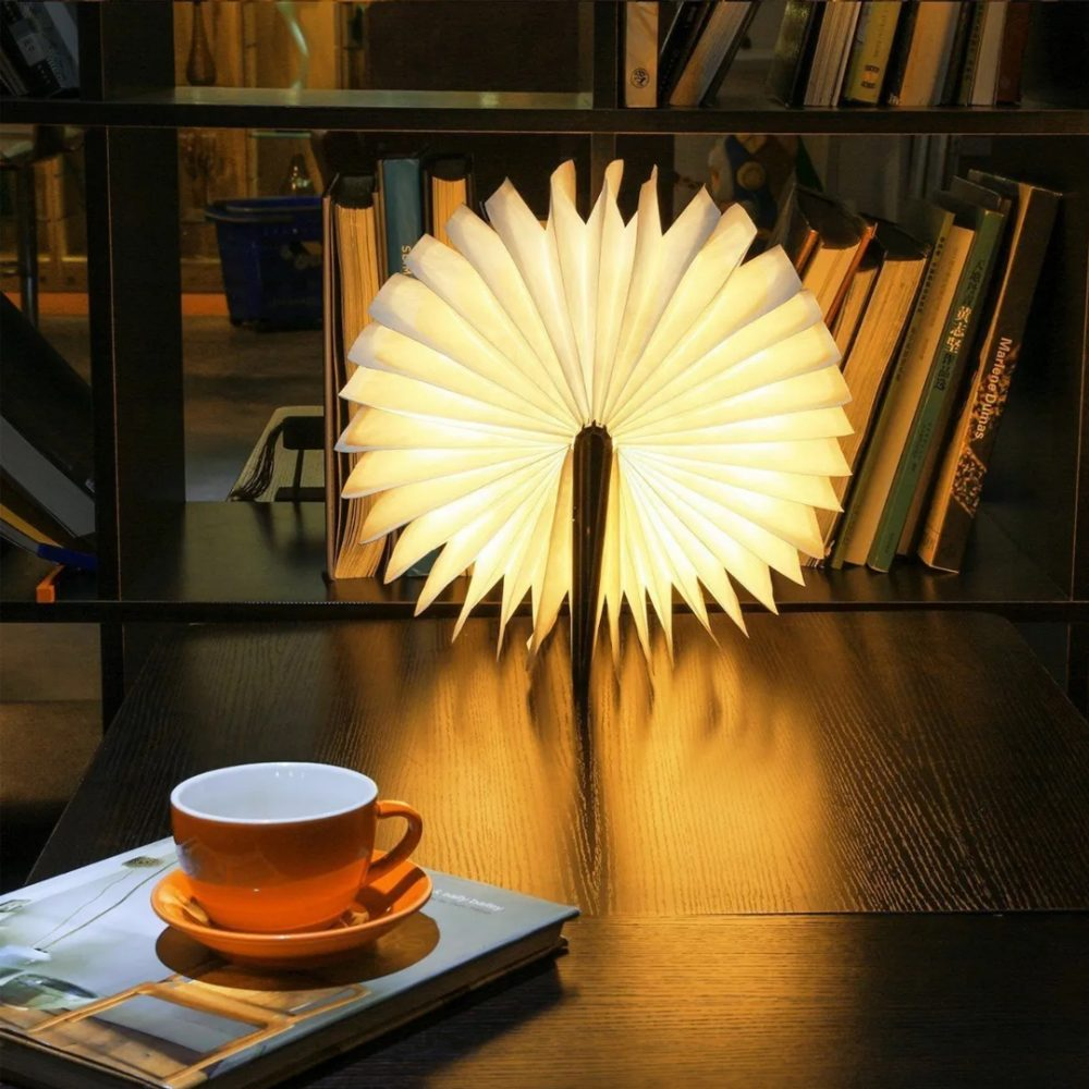 libro lampara 6