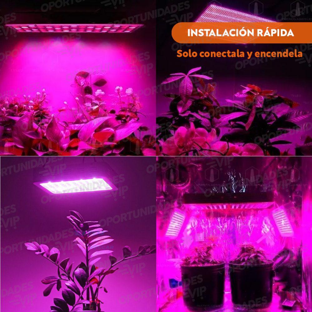 plantilla mozaico fotos producto lampara grow 2